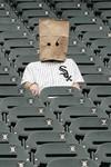 Sox_fan_baghead